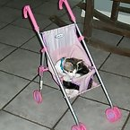 Buttons in baby doll stroller