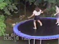 Crazy Dog Show