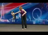 Britain_s Got Talent - Gin the clever funny dog