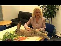 World's Largest Rabbit