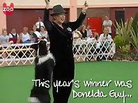 Funny Dog Dancing